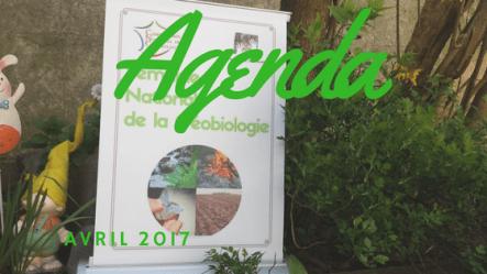 agenda avril 2017
