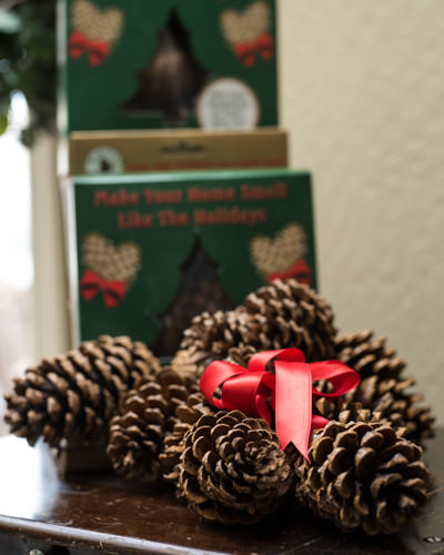 There's a decorative way to sneak this festive scent into your holiday decor. Place cinnamon-scented pinecones in a decorative bowl for an instant centerpiece. $19 for 12, balsamhill.com