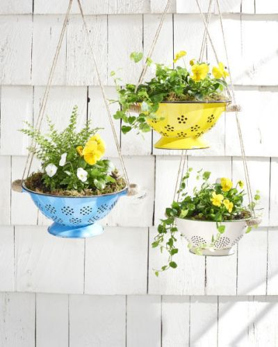 Upcycling Ideas Upcycled Kitchenware Utensils Reduce Reuse Recycle Colander Planter Hanging Plants Strainer Outdoors Plant