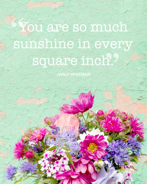"""""""You are so much sunshine in every square inch."""""""