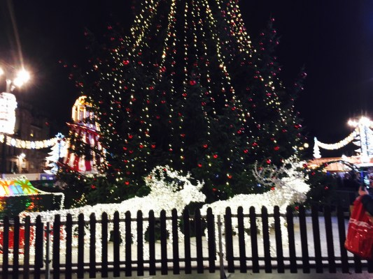 George Square dazzles in Christmas cheer