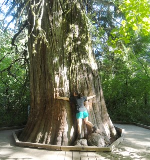 Trail of the Patriarchs at Mt. Rainier NP. This was the biggest tree we had both ever seen—little did we know just HOW MUCH BIGGER the Redwoods and Sequoias would be.