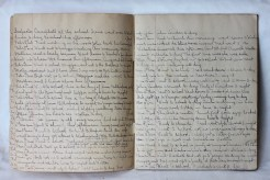 Ina (Beer) Darrach's diary - 16 years old - 1903