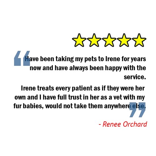 customer patient review