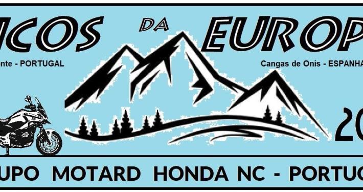Logo Picos 2021 P E