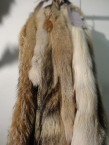 peau de renard
