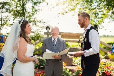 Candice & Andy Wedding, August 2015 (393)