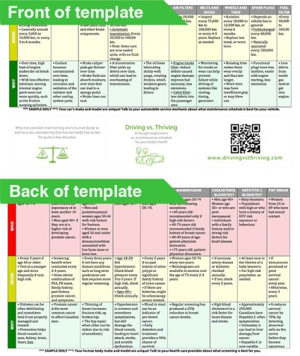 Sample front of template and back of template for a Driving vs. Thriving chart.