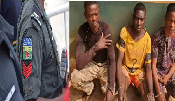 Police Arrests Suspects For Allegedly Gang-Raping Lady In Ogun