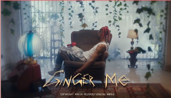 Music Video: Rema - Ginger Me || Download Mp4