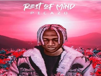 Picazo – Rest Of Mind || Mp3 Download