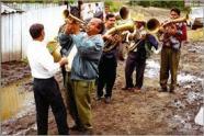 brassy band fanfaron