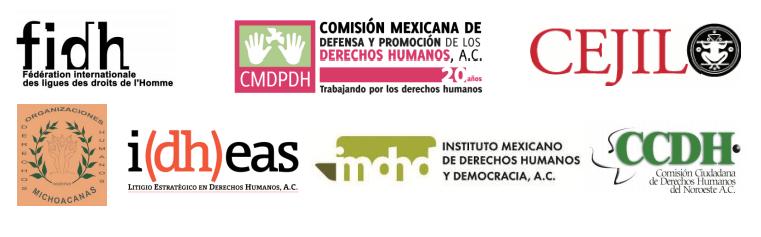 Informe presentado ante la Comisión Interamericana de Derechos Humanos, CIDH
