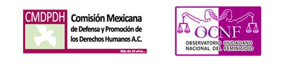 Alerta de Género en el Estado de México: Demora y consecuencias