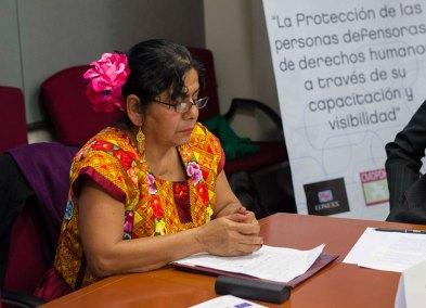 Proyecto-defensores-presentacion-08