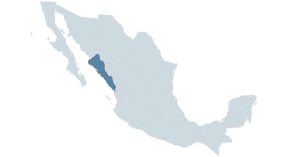 México debe garantizar protección de defensora desplazada en riesgo