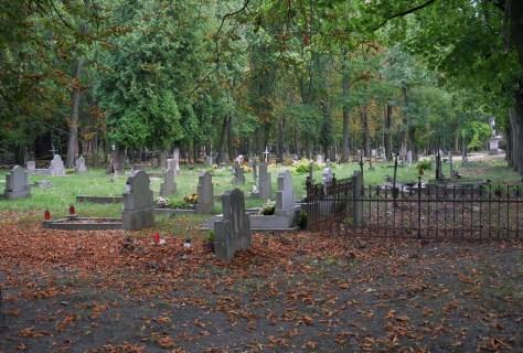 Fragment cementarza w 2016 roku, fot. R. Jeziorowski