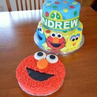 Sesame Street Characters Cake and Elmo Smash Cake