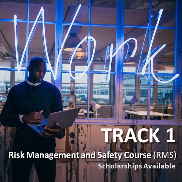 Track 1, Risk Management and Safety Course, Image of african young man standing at work using laptop