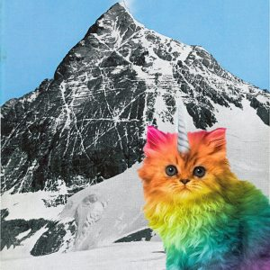 Fake news on Facebook: did this kitty climb Everest?