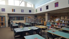 library-view-and-art