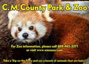 Cape May County Park Central is over 200 acres including the Zoo, with many forested areas maintained in their natural state.