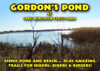 Gordon's Pond at Cape Henlopen State Park