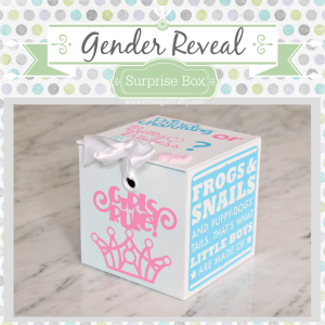 Baby Series: Gender Reveal Idea