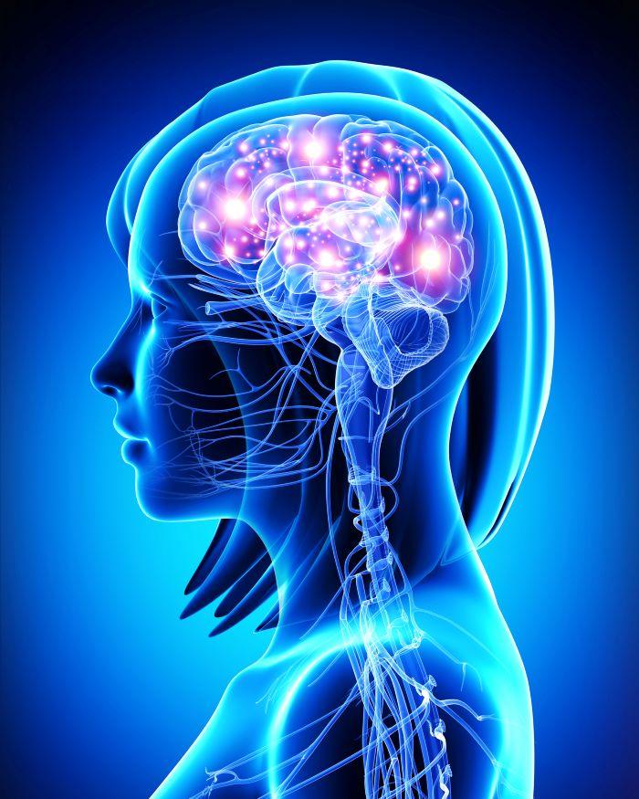 Lee más sobre el artículo Trastornos del neurodesarrollo: ¿Qué son y cuántos tipos existen?