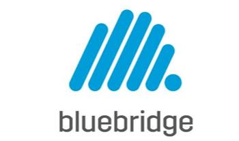 bluebridge digital startup