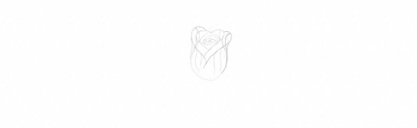 how to sketch a rose quickly