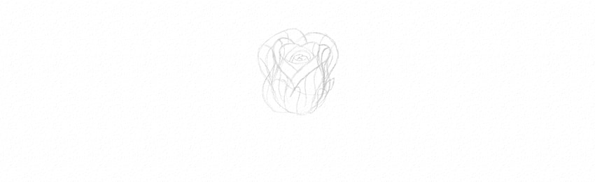 how to sketch rose in perspective