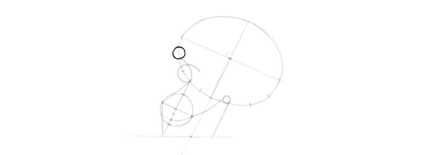 desenho sobrancelha crânio