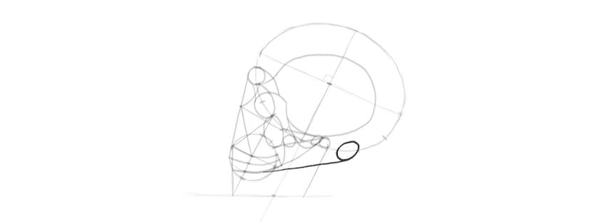 desenho crânio atrás do crânio