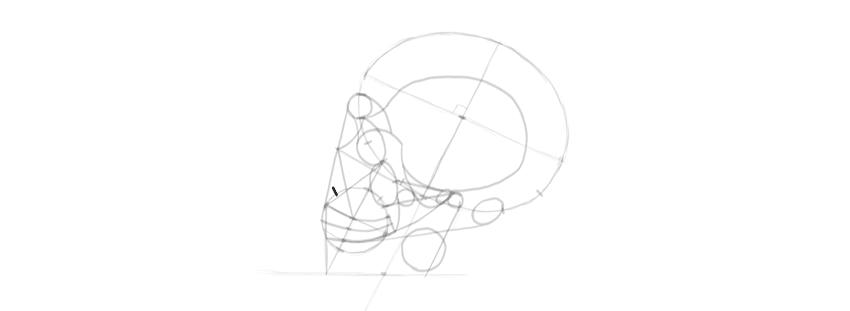como desenhar caveira