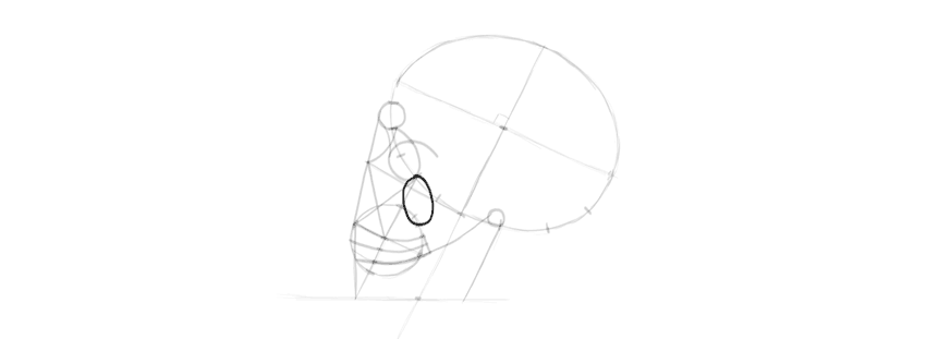desenho osso zigomático do crânio