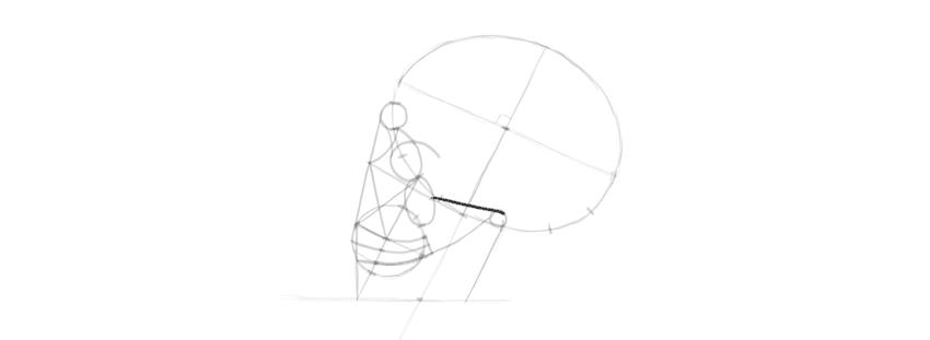 desenho detalhe lateral do crânio