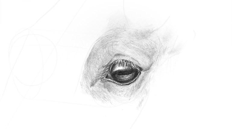 horse eye shading with depth