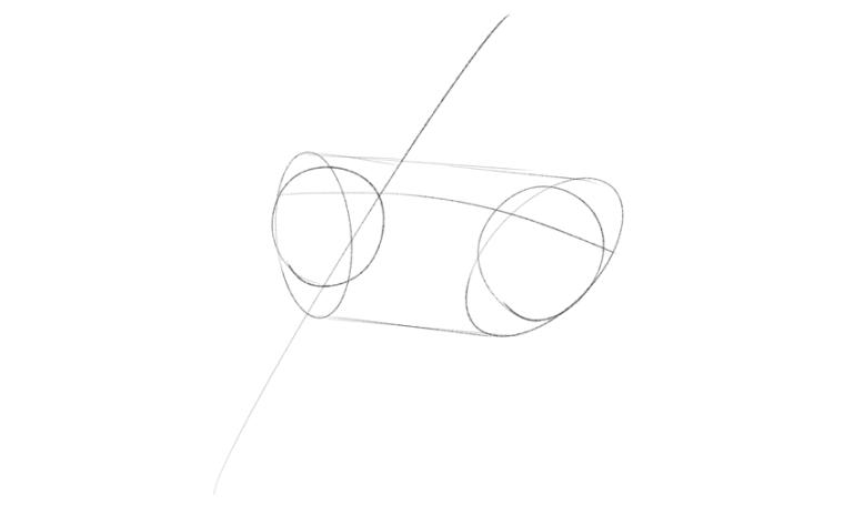 horse eyeballs
