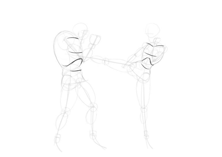 torso main muscles