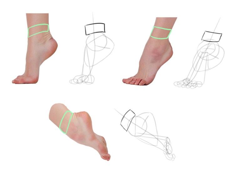 draw ankle