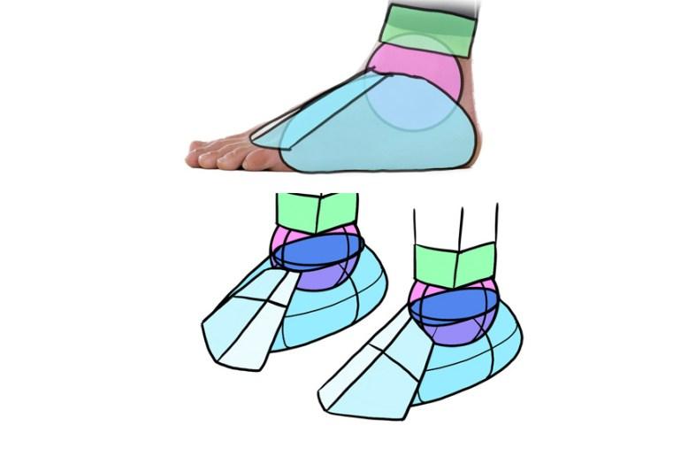 top of foot simplified