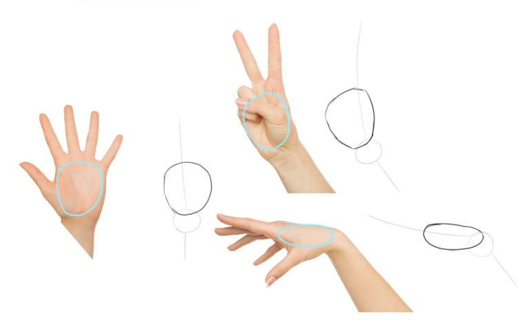 draw palm of the hand