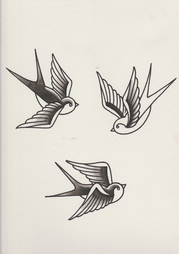 Swallows with solid lines added