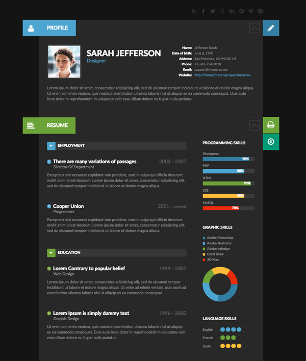 resume website examples resume website theme example profile and