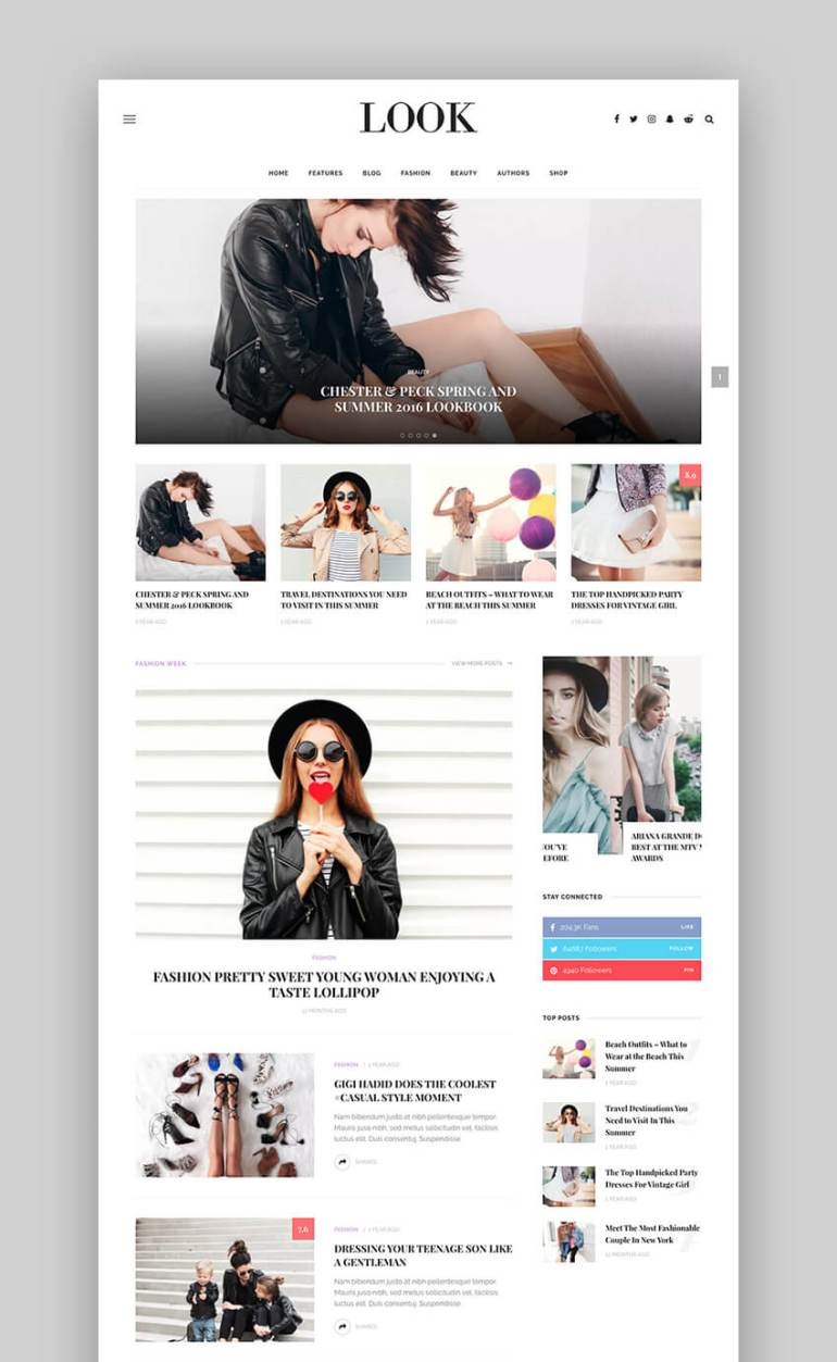 Look Stylish Theme for WordPress website designs