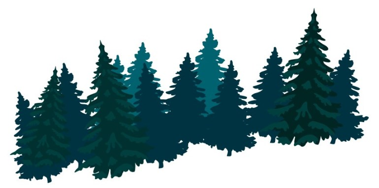 vector pine forest