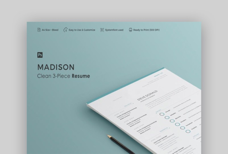 20 Simple Resume Templates  Easy to Customize   Edit Quickly  Resume   Madison   Minimal and Simple Resume Look