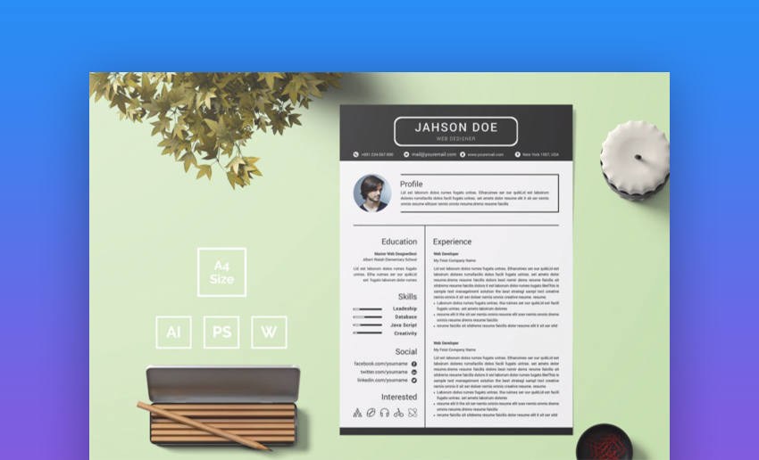 29 Best Contemporary New Styles Resume Cv Templates For