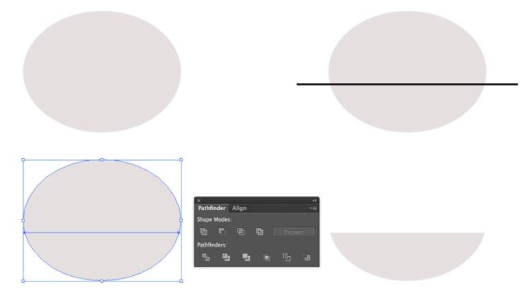 Creating and Dividing a Circle